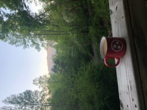 Smoky Mountain VIews, Cabins with view, cabins, chalets, Gatlinburg, Pigeon Forge, SMOKYs Real Estate